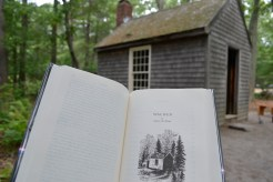 Illustration of Thoreau's cabin vs. the replica at Walden Pond.