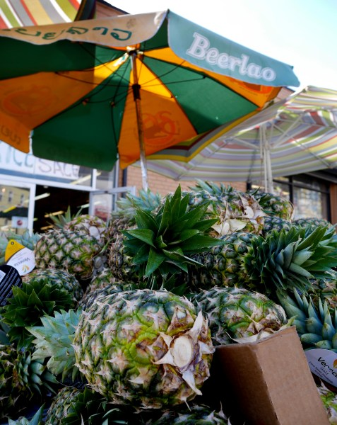 howl-cambodia-town-pineapples