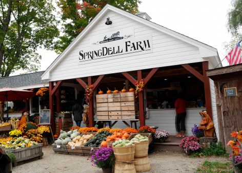 The colors of autumn at Springdell Farmstand, 571 Great Road, Littleton. Photo by Tory Germann.