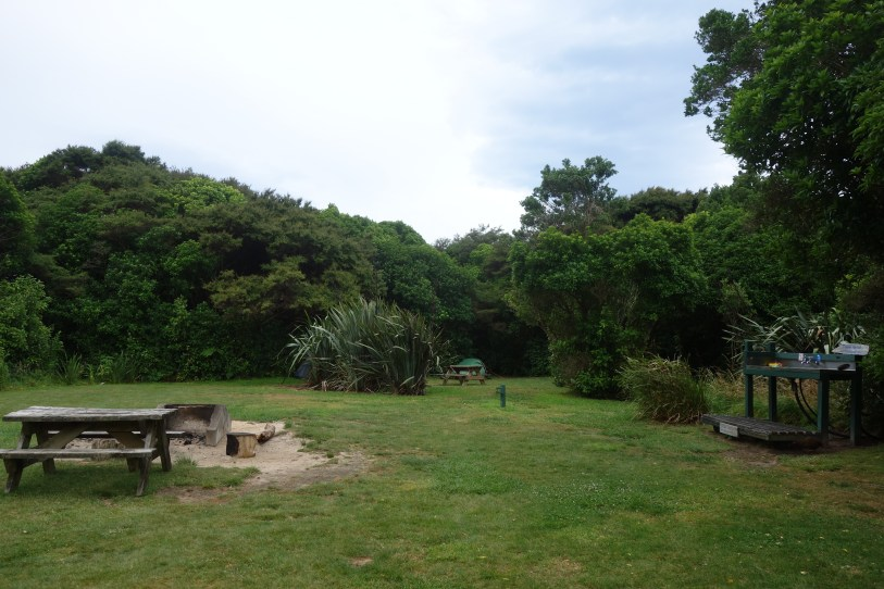 Wharawharangi campsite - our green tent close to the shelter of the trees