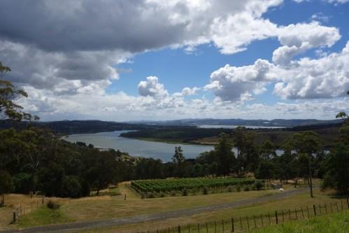 Tamar Valley wine region