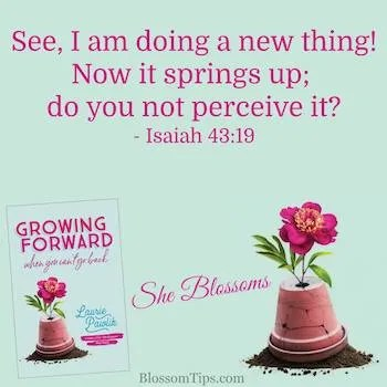 How to See a Fresh New You She Blossoms Tip 73
