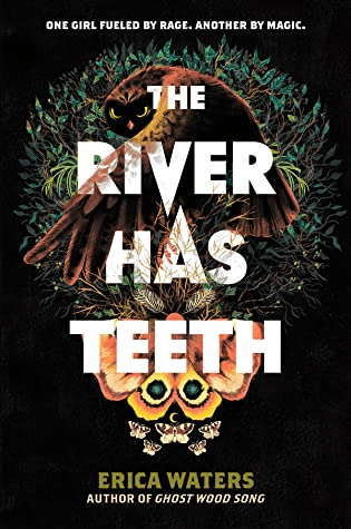 Cover of The River Has Teeth by Erica Waters. cover shows an owl and a butterfly. The owl is staring straight at us, partially hidden behind its wing, with only its eyes exposed.