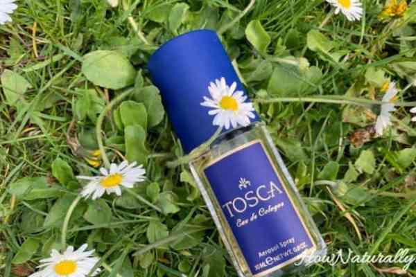 Tosca perfumes, classics and quality cheap perfumes