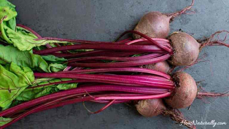 Beet sourdough – for borscht and for health