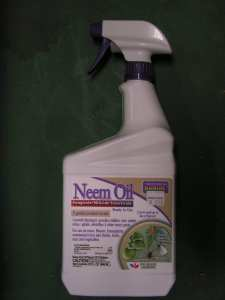 Ready-to-use Bonide Brand Neem Oil for controlling sucking insects and powdery mildew