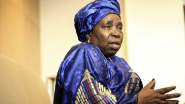 Dlamini-Zuma vs opposition parties