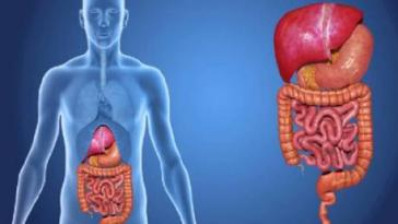 9 Habits That Could Hurt Your Digestive System