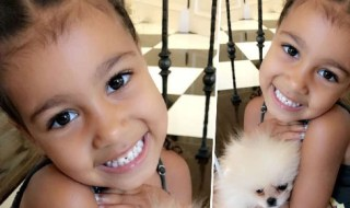 North Gives Her New Pup A Fishy Name