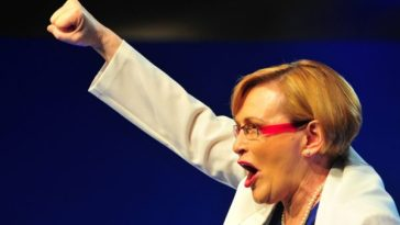 zille approves affordable housing