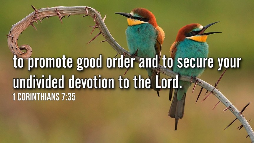 """Thought for February 24th. """"TO SECURE YOUR UNDIVIDED DEVOTION TO THE LORD"""""""
