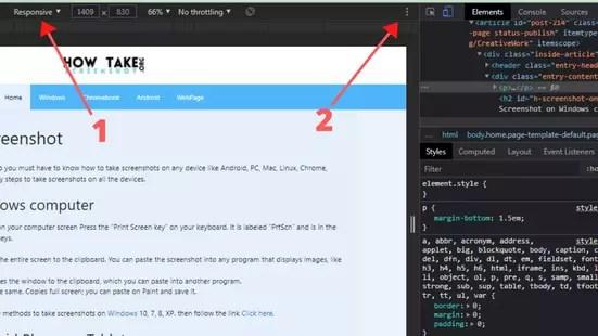 Ekran Görüntüsü Web Sayfası Al