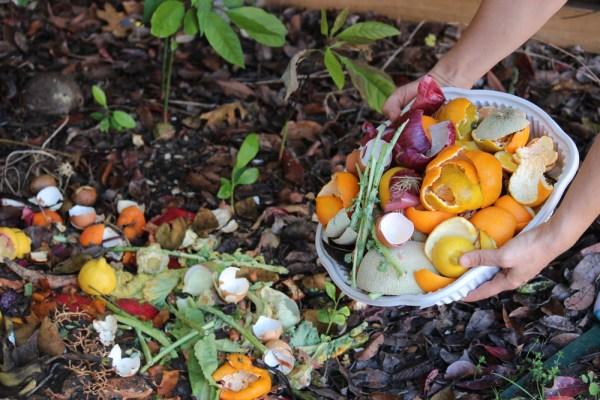 ce deseuri menajere poti utiliza pentru compost