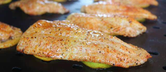 Barbecue Catfish
