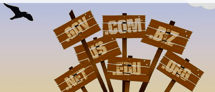 Why You Need to Purchase Your Domain Name Now…Not Later