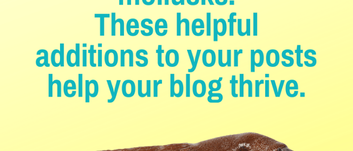 SEO and URL Slugs for Blog Posts
