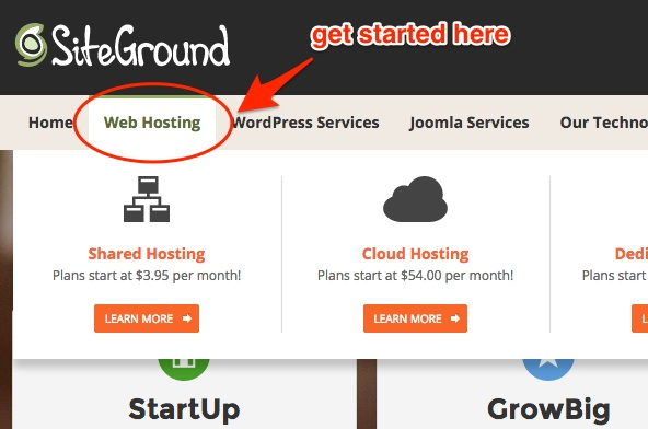 Screenshot showing to click on the web hosting link
