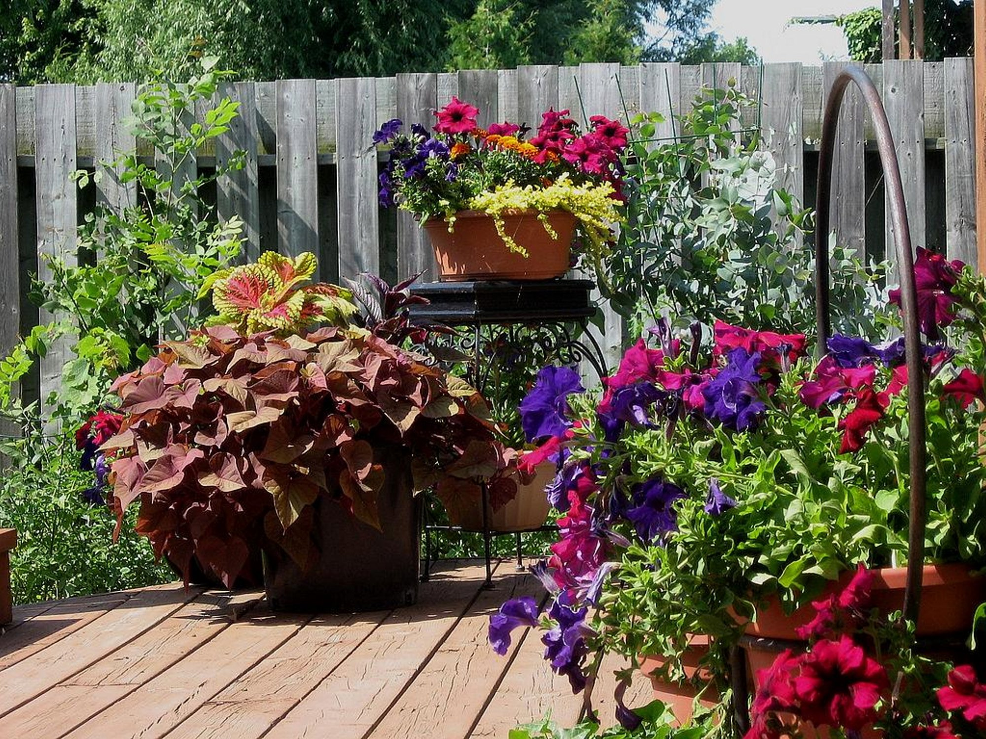 Making A Patio Flower Container Garden Tips How To Build A House
