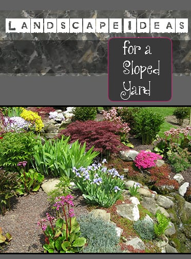 landscape ideas sloped yard
