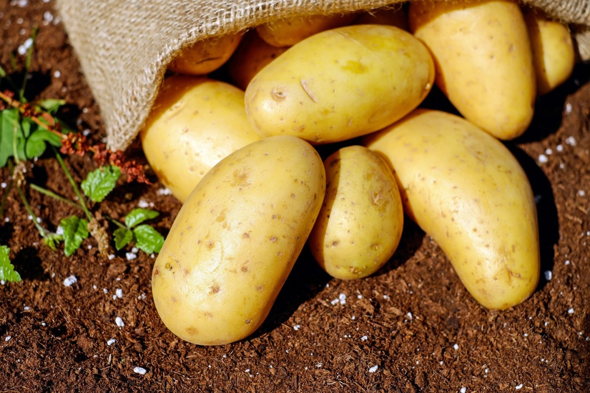 Potatoes Potassium Food Source