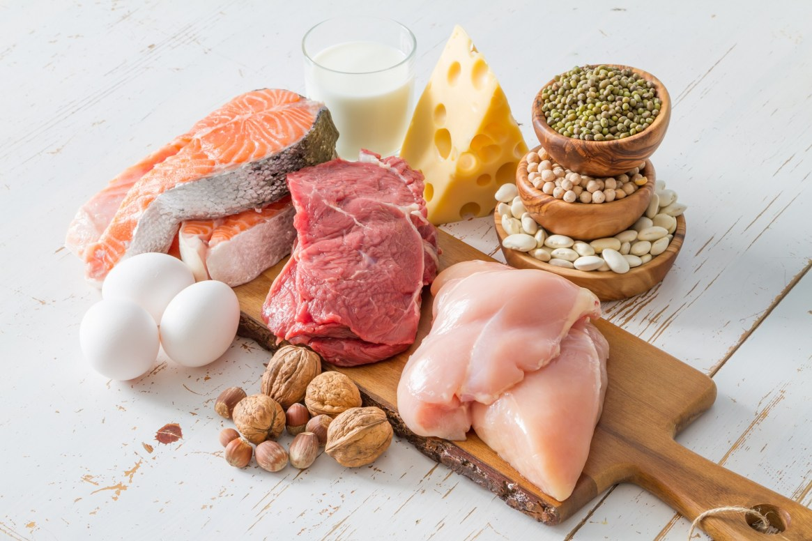 meat-based protein sources