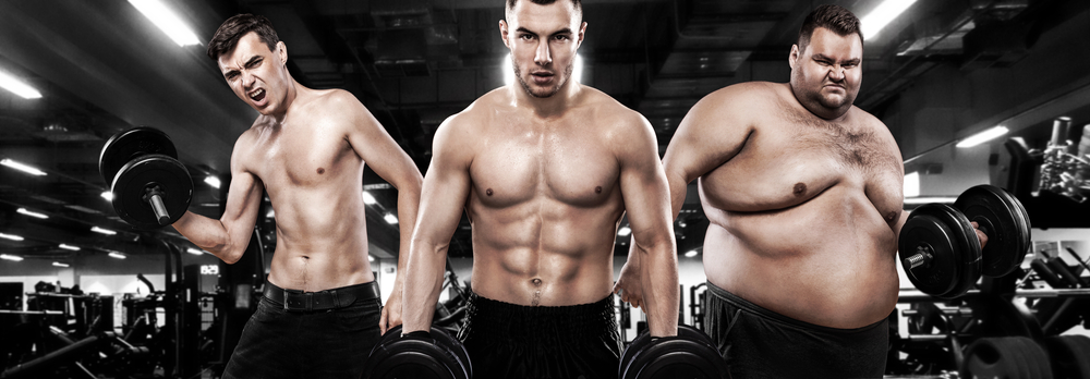 Muscle Building vs Muscle Toning