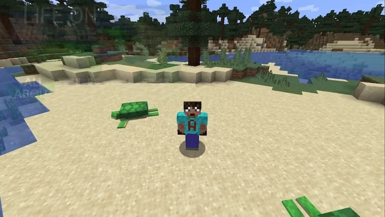 How To Get Seagrass In Minecraft