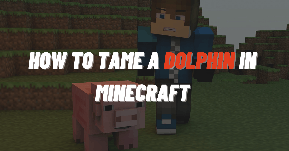 How To Tame A Dolphin In Minecraft