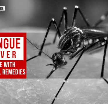 dengue fever treatment
