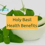 Holy Basil Benefits
