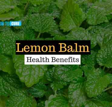 health benefits of lemon balm (6)