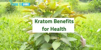kratom benefits for health