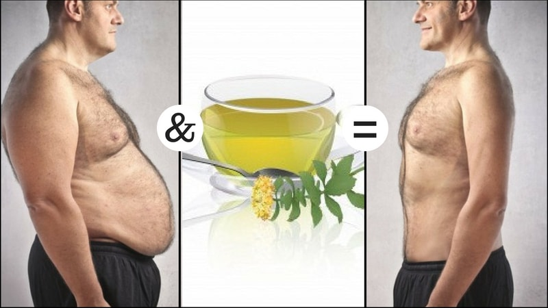 rhodiola to weight loss