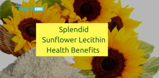 Sunflower Lecithin health benefits