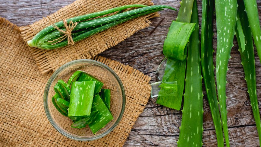 Aloe Vera Gel for Removing Under the Skin Pimples