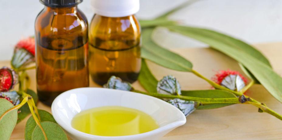Eucalyptus oil for menstrual cramps