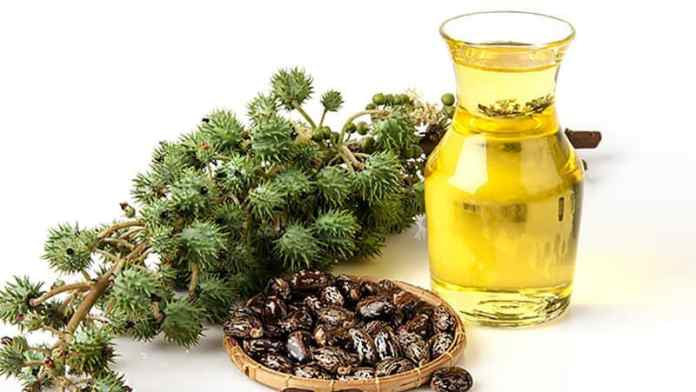 castor oil for inducing labour