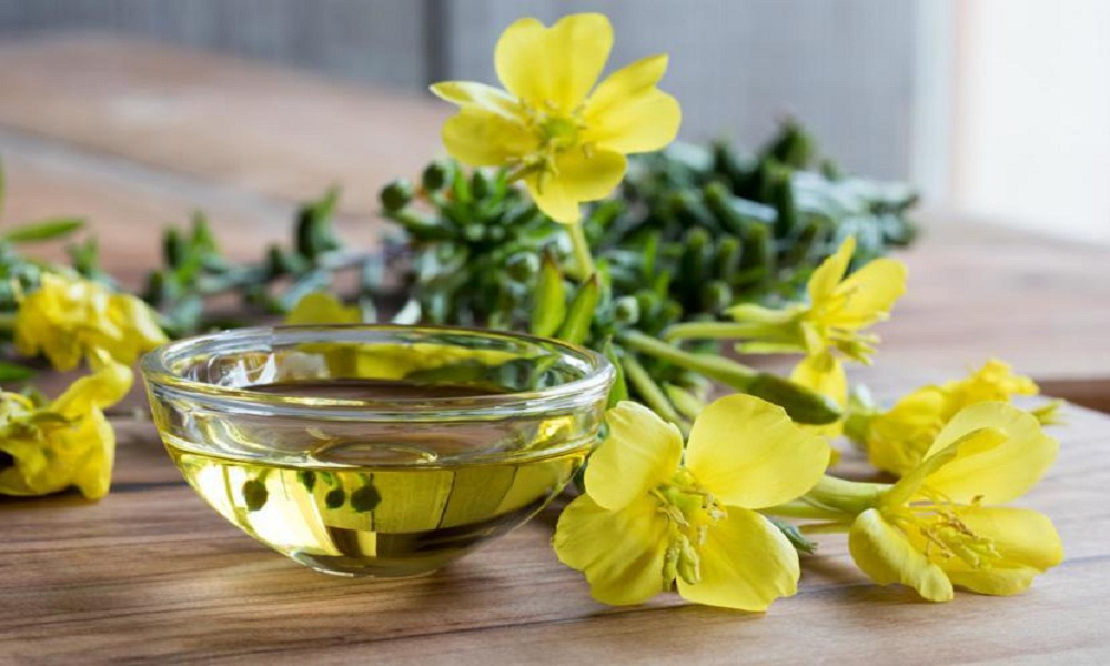 evening primrose oil for neuropathy