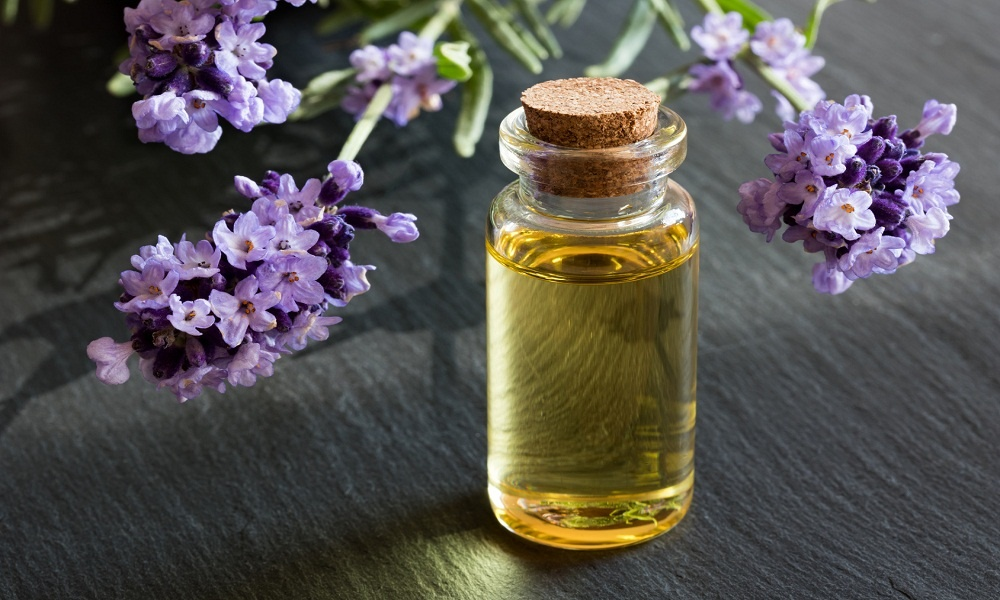 lavender essential oil for snoring