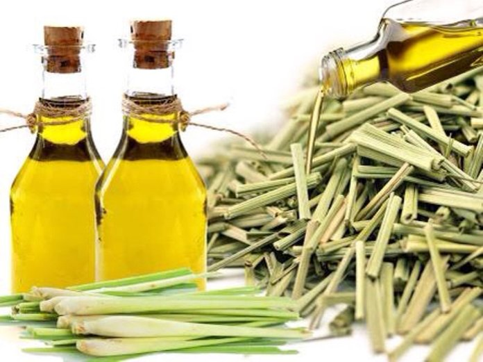 lemongrass oil for back pain