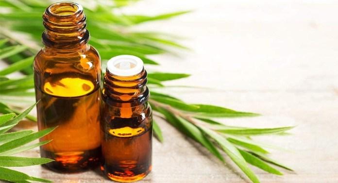 tea tree oil for hives