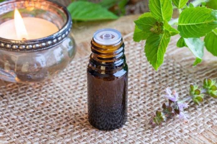 basil essential oil for focus