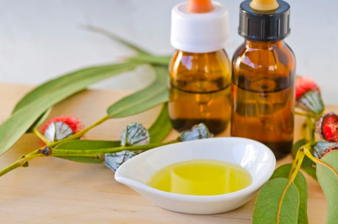 eucalyptus essential oil for cold sores