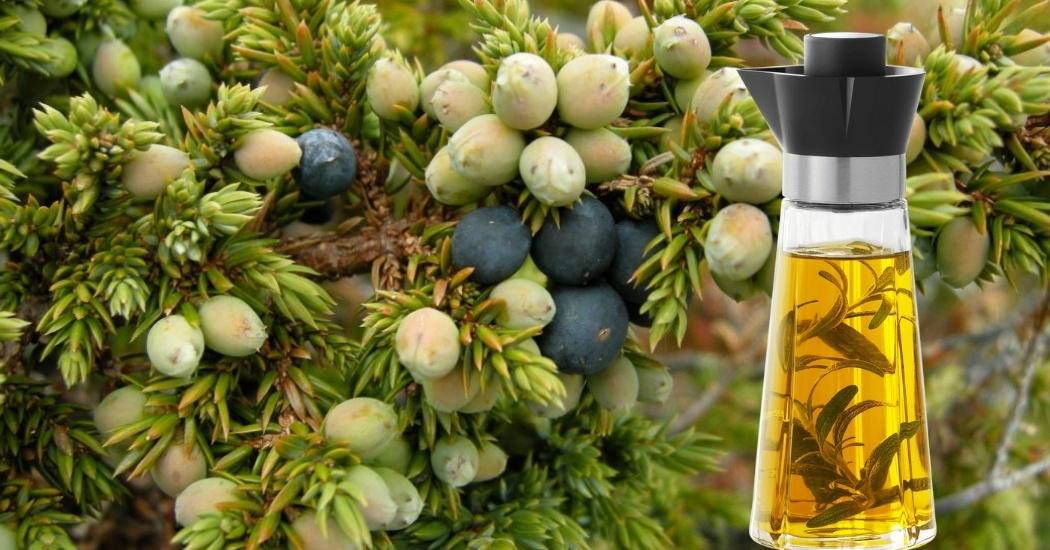 juniper essential oil for muscle pain