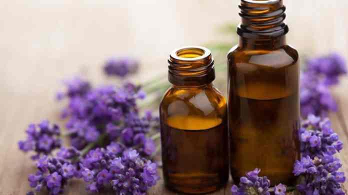 lavender oil for dandruff