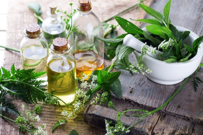 marjoram oil for pain