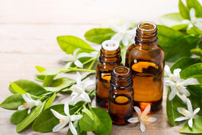 neroli essential oil in the brown glass bottle, with fresh white neroli flower and green leaves.