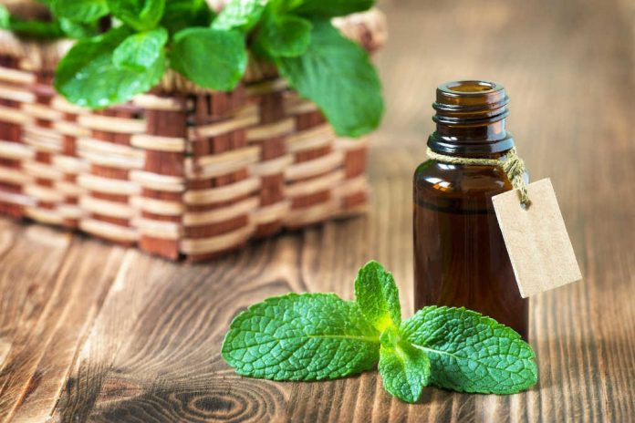 peppermint oil for chest congestion
