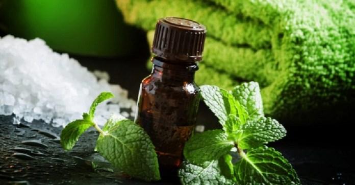 peppermint oil for sunburn