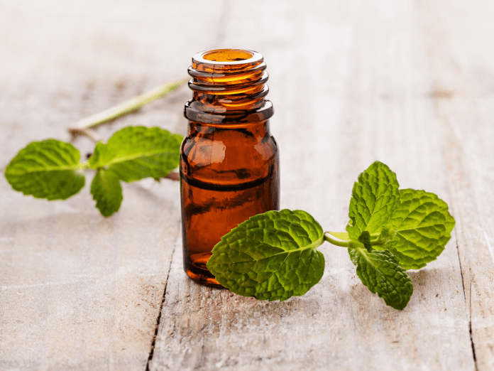 spearmint essential oil for nausea